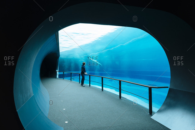 Visitor at the Aquarium of Genoa