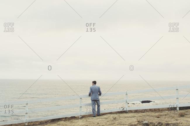 Back view of man in suit overlooking ocean