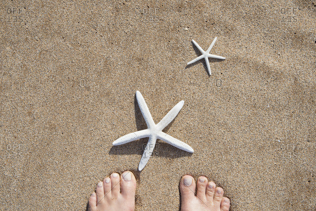 A pair of bare feet and starfish shells on a beach in Maui, Hawaii