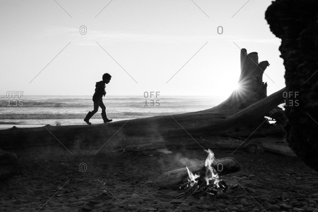 Child climbing on tree on beach with campfire