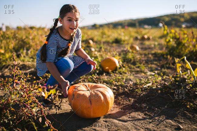 Girl picking a pumpkin in a pumpkin patch