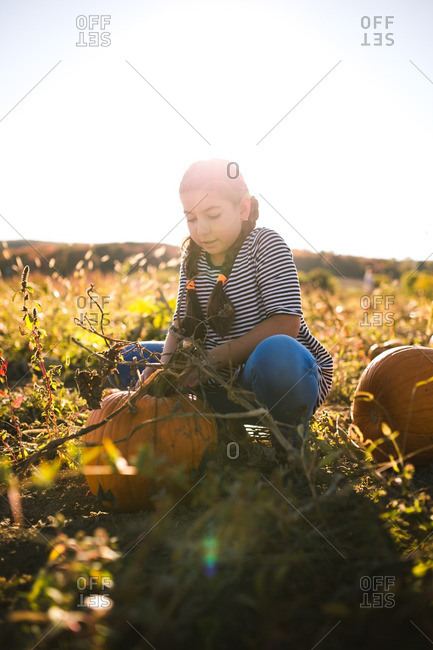 Girl selecting her pumpkin in a pumpkin patch