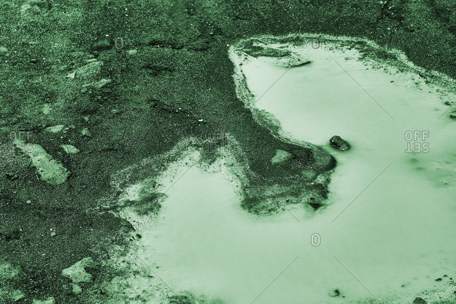 Detail of green puddles in dirt
