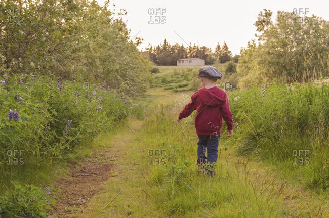 Boy walking away through a field of grass