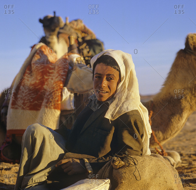 October 12, 2015: A bedouin in front of camels