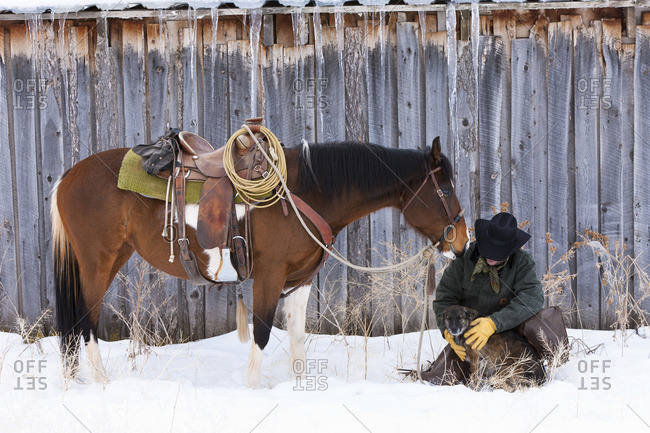 Cowboy with dog and Horse