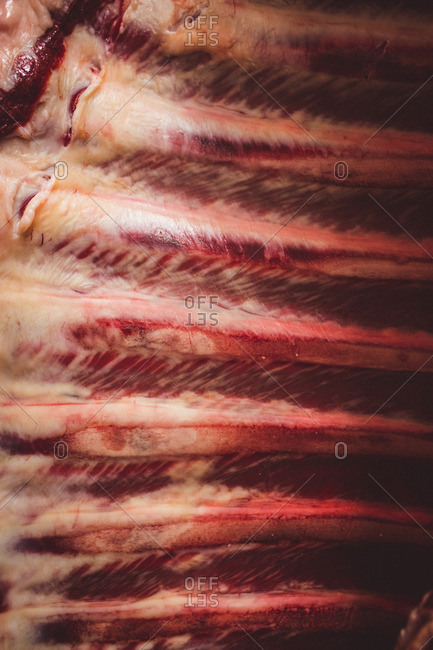 Close-up of beef ribcage at butchers shop