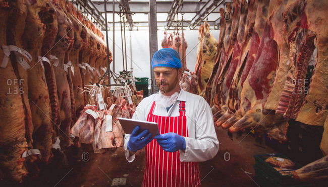 Butcher using digital tablet in meat storage room at butchers shop