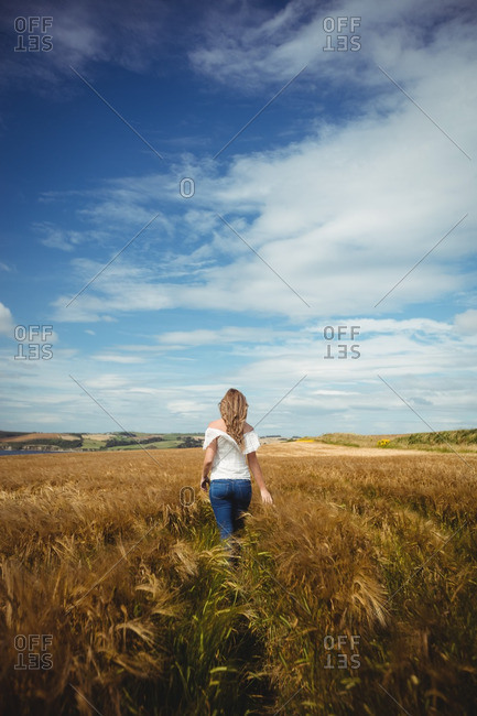 Rear view of woman walking through wheat field on a sunny day