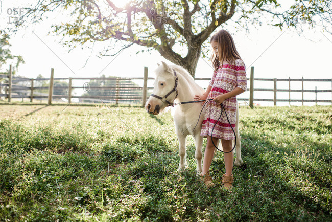 Young girl standing and petting a white pony on a farm