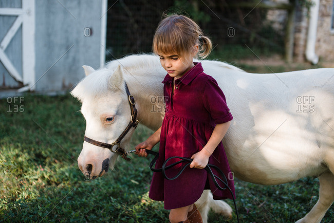 Little girl walking with a white pony on a farm