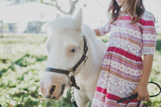 Young girl petting a small white pony on a farm