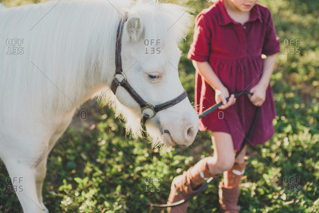 Little girl walking with a little white pony
