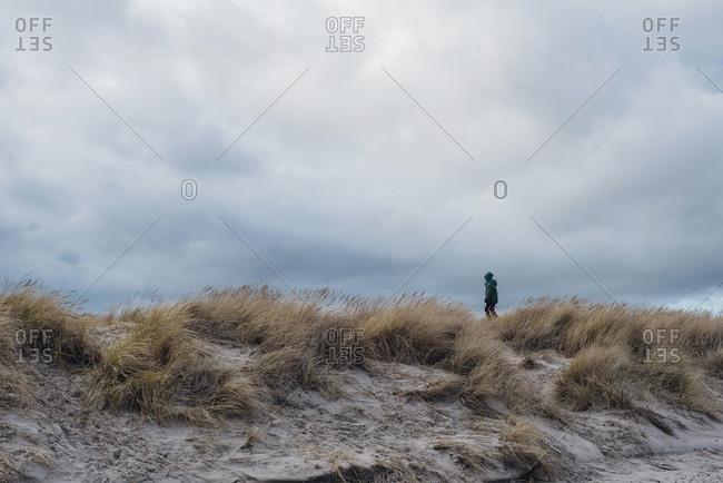Denmark- Skagen- boy in winter clothes in dunes