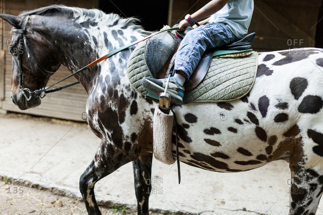 Little boy riding horse- partial view