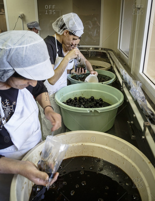 Agros, Cyprus - May 7, 2015: Women working in the kitchen at the factory of Nikis Sweets