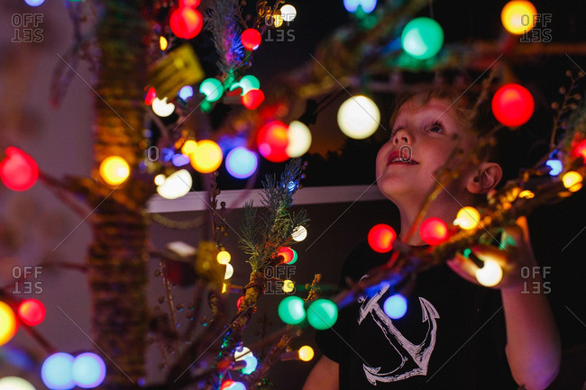 looking for christmas lights