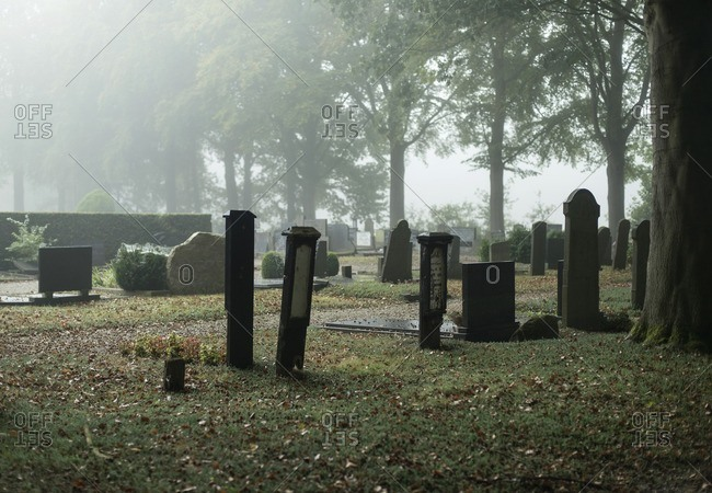 Tombstones in a cemetery on a misty autumn day in The Netherlands