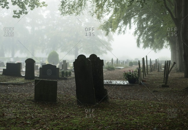 Graveyard with trees in mist in autumn in The Netherlands