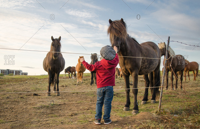 Boy standing and petting a horse along a fence