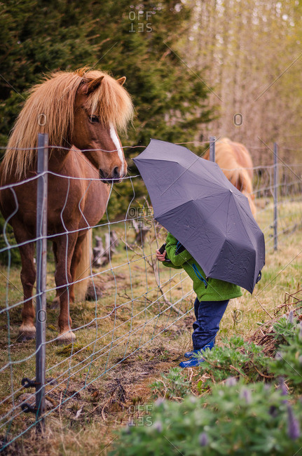 Child holding an umbrella standing near a horse pasture