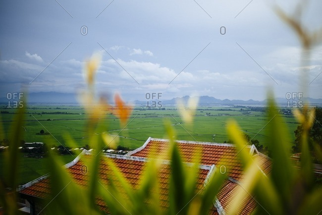 A view over rice paddies in Chau Doc, Vietnam