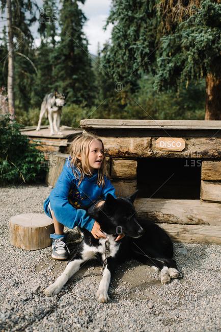 Boy bonding with a sled dog