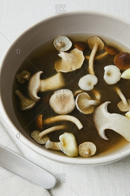 Close up of mushroom soup