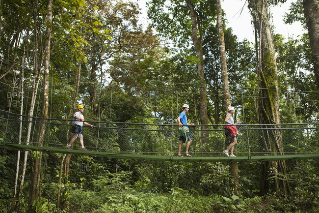 People crossing suspension bridge in forest