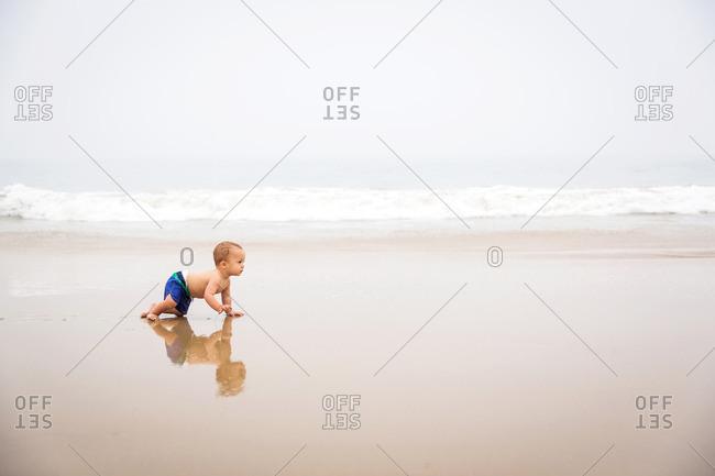 Toddler crawling along a beach