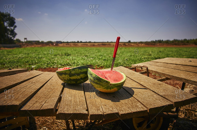 Italy- Apulia- Freshly harvested water melon on wooden cart