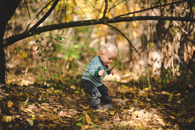Toddler playing with a stick in the forest