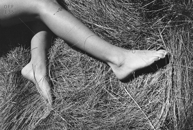 Legs of a woman in grass