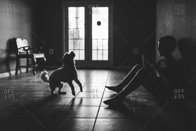 Silhouette of young boy throwing ball to dog