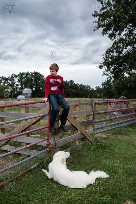 Boy sitting on fence with dog at his feet