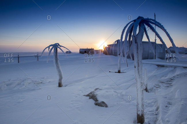 """Baleen (whale) """"palm trees"""" decorate a fishing cabin on the frozen shore of the Chukchi Sea, Barrow Alaska"""