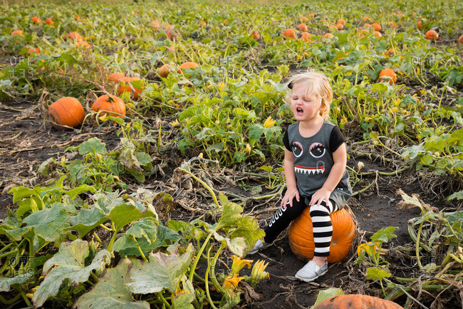 Grumpy young girl sitting on pumpkin in field
