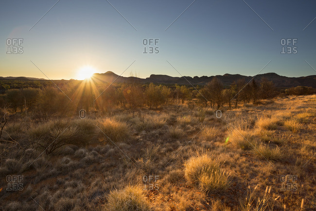 Australia, Northern Territory, Alice Springs, Field at sunset