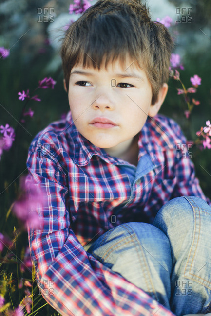 Sweden, Boy sitting among pink flowers