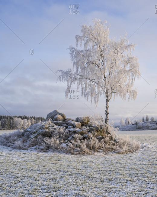Sweden, Uppland, Hatuna, View of winter scene