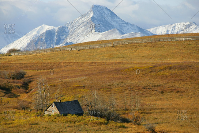 Old abandoned farmstead with mountains for Waterton National Park in the distance, outside of Pincher Creek, Alberta, Canada