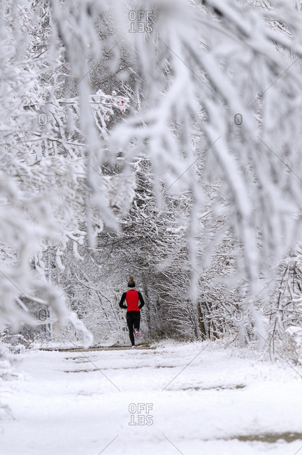 Jogger in red shirt jogging along a pathway after a heavy snow.  Fergus, Ontario, Canada