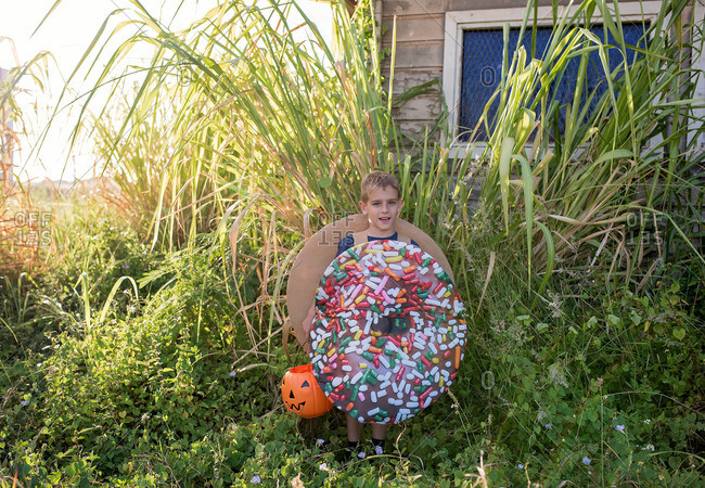 sc 1 st  Offset by Shutterstock & Boy wearing a sprinkle donut costume stock photo - OFFSET