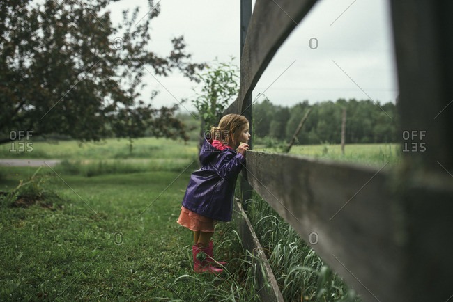 Little girl looking through a wooden fence