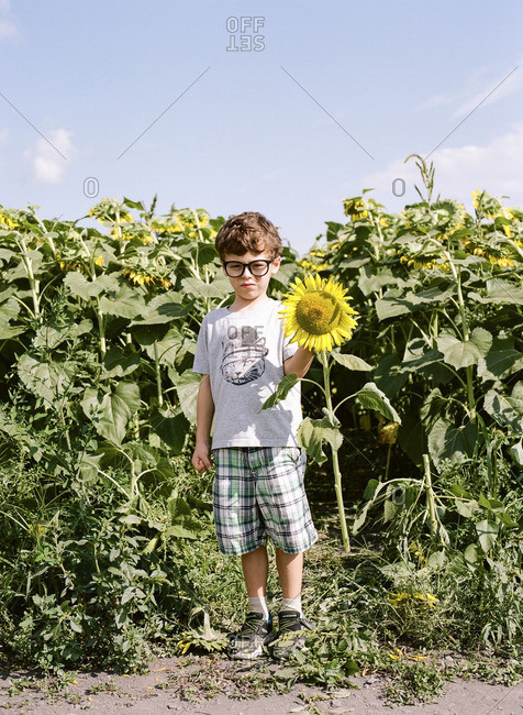 Boy standing by a sunflower