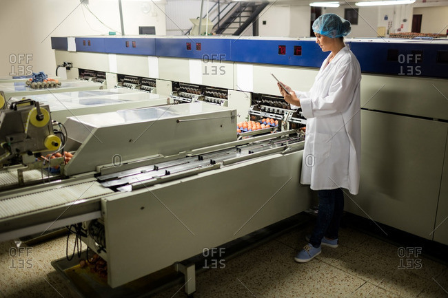 Female staff using digital tablet next to production line in egg factory