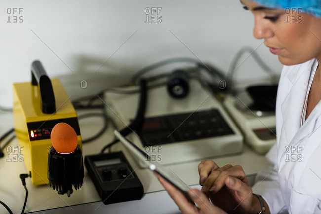 Female staff using digital tablet while examine egg on digital egg monitor in egg factory