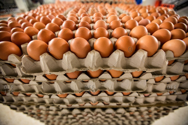 Stack of cartons with eggs in factory