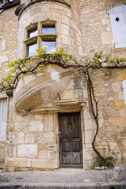 Vine growing up side of building in Avallon, France