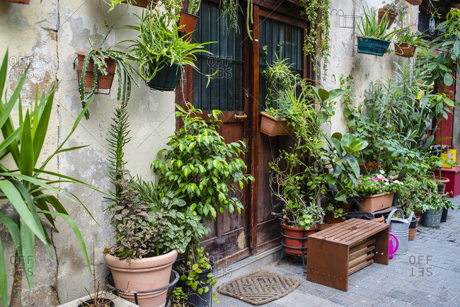Plants surrounding building entrance in the El Born district in Barcelona